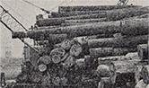 木場の歴史